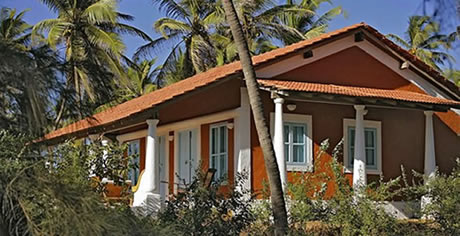 mandrem-man24-villa-goa-006